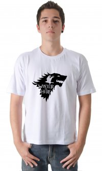 Camiseta Winter is Here