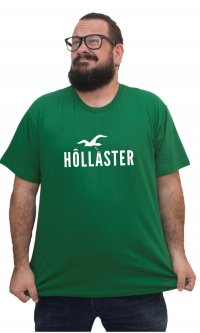 Camiseta Hollaster