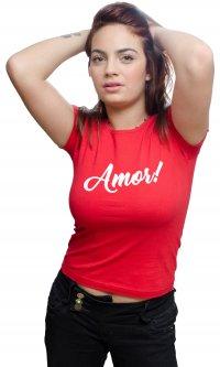 Camiseta Amor!